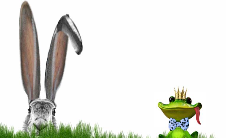 Vorschau - Das magische Ei